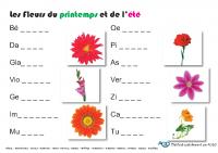 fleurs_du_printemps_et_de_l_ete
