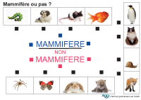 jeu_images_mammiferes_ou_pas