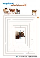 labyrinthe_animal_et_son_petit